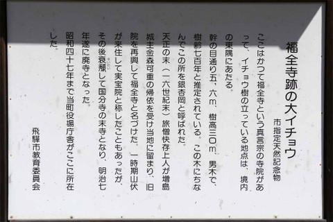 Imgp4369