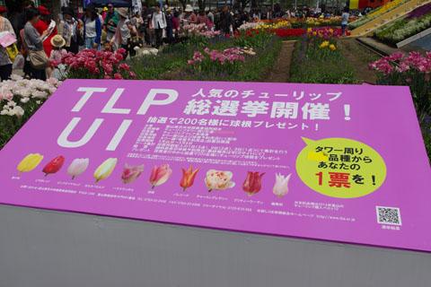 Imgp9733
